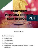 SLIDE PA BLOK 17 NEUROLOGI.pptx