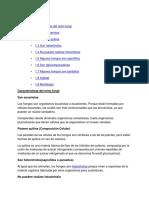 CARACTERISTICAS DEL REINO FUNGI MINDY.docx