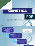 1ºsem genetica (1)