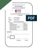 proyecto   investigacion.docx