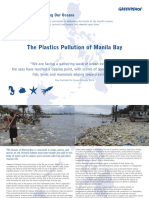 THE PLASTIC POLLUTION