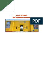 SALIDA-DE-CAMPO.docx