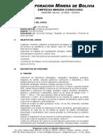MANUAL DE FUNCIONES GEOLOGIA.doc