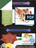 Hemograma Cirugia l