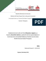 CORRECCION_FINAL-3-PFI-2018-I-ULTIMA.docx