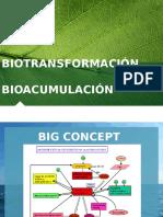 Biotransformación y Bioacumulación.pptx