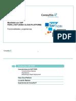 FIORI_HCP_v1.pptx