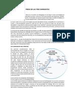 PRESA DE LAS TRES GARGANTAS.docx
