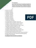 Clasificacion y tipos morfologicos.docx