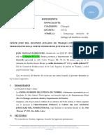 demanda de procesal.docx