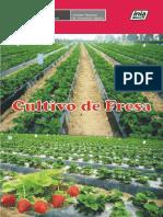 Olivera-Cultivo_de_Fresa.pdf