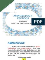 29 Aminoacidos y Peptidos 2018