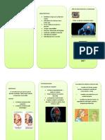 Triptico-accidentes-cerebro-vascualres.docx