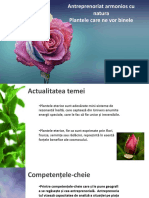 Multi Colors Rose PowerPoint Templates Widescreen (1)