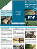 folleto_forraje_verde_hidroponico.pdf