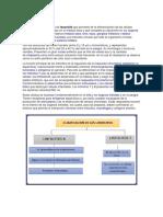 ficha linfocitos.docx