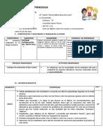 SESION DE COM. DE DIPTICOS.docx
