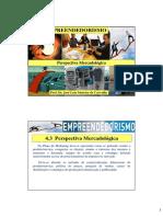 EMPREENDEDORISMO - Perspectiva Mercadológica