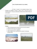 Pollution in Wetlands of Villa Maria.docx