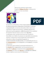 INFORMATICA DAN.docx
