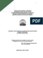 tesis René Segundo  Hernández Igirio-3.docx