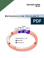 BC07 - Reproducción Celular I