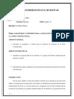 CONSTITUCIONAL IMPRIMIR ENSAYO.docx