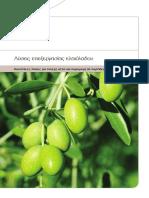 Olive Oil Processing Solution Gr 1.0