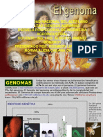 EL GENOMA ENVIAR.ppt