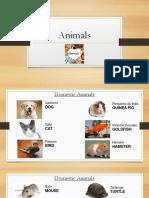 Aula 6 - Animais, Demonstrativos, Dias, Meses, Estações, Números Ordinais-1.pdf
