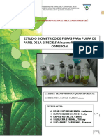 ESTUDIO_BIOMETRICO_SCHINUS-MOLLE.pdf