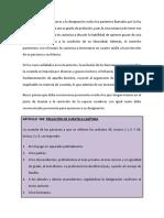 CURATELA.docx
