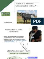 Presentacion del MV Juan Uzcategui.pdf