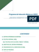 Programa de Inducción Básica en HSEQ 01