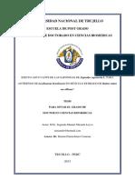 UNIVERSIDAD_NACIONAL_DE_TRUJILLO_ESCUELA.pdf