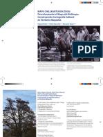 Descolonizando el Mapa del Wallmapu.pdf
