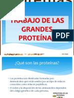 Trabajo de Las Grandes Proteínas