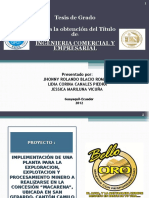 Presentacion Proyecto de Implementacion de Una Planta Par La Exploracion Explotacion y Proceso Mi