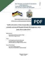 67888.pdf