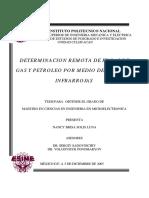 362_2005_ESIME-CUL_MAESTRIA_solis_luna_nancy_brisa.pdf