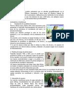 Pueblo maya completo1.docx