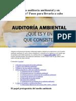 Auditoría ambiental.docx