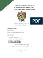 INFORME N° 02 DE FISICA 2-1
