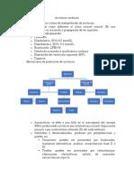 1. Arritmias cardiacas.docx