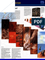 1 Geofisika umum.pdf