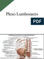 Plexo Lumbosacro.pdf