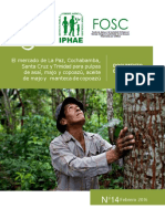 Informe_IPHAE_completo_final.pdf