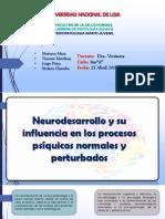 NEURODESARROLLO Y SU INFLUENCIA EN LOS PROCESOS PSÍQUICOS NORMALES Y PERTURBADOS