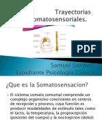 Trayectorias Somatosensoriales.pptx
