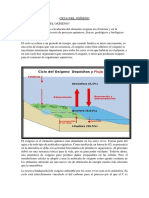 CICLO DEL OXÍGENO.docx